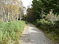 The Great Glen Way - geograph.org.uk - 584429.jpg