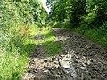 The Ridgeway Path after weeks and weeks of rain - geograph.org.uk - 507652.jpg