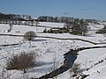 The River East Allen near Burnfoot - geograph.org.uk - 1744621.jpg
