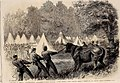 The War in America, Quartermaster's Department, killing Bullocks in the Federal Camp, Virginia - ILN 1861.jpg