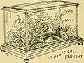 The aquarium (1894) (19739142472).jpg