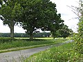 To Anthony's Cross from Kent's Green - geograph.org.uk - 833675.jpg
