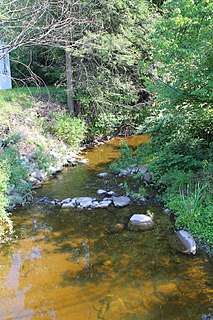 Toby Creek river in the United States of America