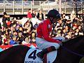Tokyo Daishoten Day at Oi racecourse (31834769812).jpg