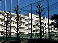 Tokyo Metropolitan Hakuo Senior High School.JPG
