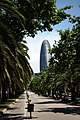 Torre Agbar - panoramio (23).jpg