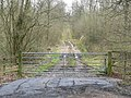 Track through Owston Woods - geograph.org.uk - 757733.jpg
