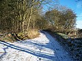 Track to Taddington - geograph.org.uk - 1632374.jpg