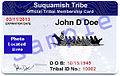 Tribal ID 1.jpg