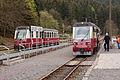 Triebwagen-Kreuzung in Eisfelder Talmühle.jpg