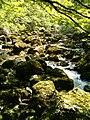 Triglav National Park, Ukanc 143, 4265 Bohinjsko jezero, Slovenia - panoramio.jpg