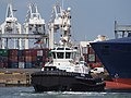 Triton (tugboat, 2008) Port of Rotterdam pic2.JPG