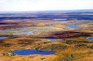 Landscape - Tundra in Siberia, Russia.