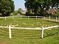 Turf Maze - geograph.org.uk - 411942.jpg