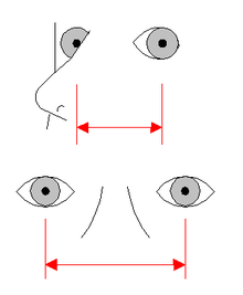 Vehicle blind spot - Wikipedia