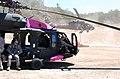 UH-60 Black Hawks painted pink 120715-Z-WM549-002.jpg