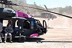 UH-60 Black Hawks painted pink 120715-Z-WM549-002.jpg