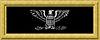 USN cpt rank insignia