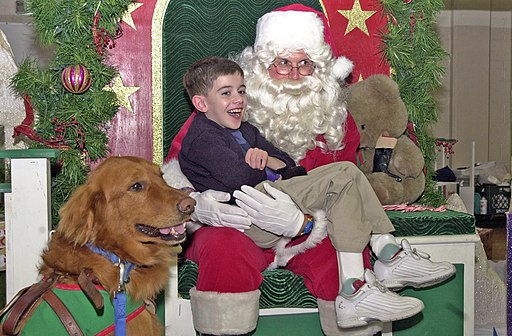US Navy 041211-N-5940R-023 Christopher James and his seeing eye dog, Mr. Hope tell Santa Claus what they would like for Christmas how dogs see christmas day