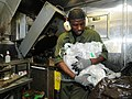 US Navy 110712-N-TB177-117 Logistics Specialist 3rd Class Mohammed Yakubu processes plastic in the trash room aboard the guided-missile destroyer U.jpg