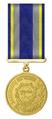 Ukraine-Defender of the Motherland Medal.PNG