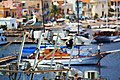 Un gabbiano a Lipari.jpg