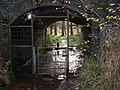 Underpass - Railway Line, Sutton Park - geograph.org.uk - 1572458.jpg