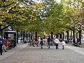 Unter den Linden im Herbst.jpg