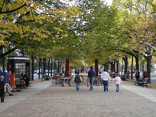 Unter den Linden im Herbst