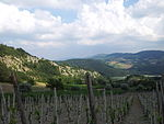 Val Tidone da Ruino.jpeg