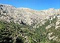 Venaco vallon du ruisseau de Paratella et monte Cardo.jpg