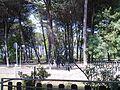 Viale Italia Tagliata Maggio 2010 2 - panoramio.jpg