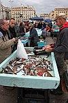Vieux-Port de Marseille, poissons pour la bouillabaisse.jpg