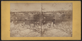 View of Shelton, above the bridge, from Sugar St., Birmingham, Conn, from Robert N. Dennis collection of stereoscopic views.png