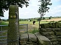 View through stile - looking towards Cheese Bottom - geograph.org.uk - 896629.jpg