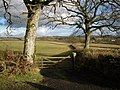 View towards Waldons - geograph.org.uk - 1135422.jpg