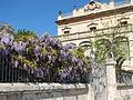 Villa Rosita 2.JPG