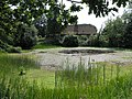 Village pond with village hall in the background - geograph.org.uk - 20961.jpg