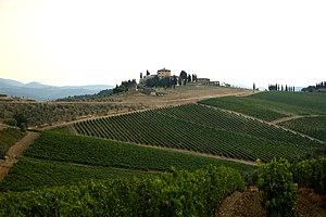 Tuscany, Italian wine region of Chianti