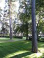 Visnums kyrkas kyrkogård8.JPG
