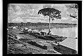Vista Parcial de Porto Velho, Acervo do Museu Paulista da USP.jpg