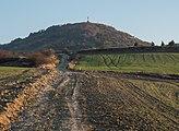 Vitoria - Olarizu - Camino 01.jpg