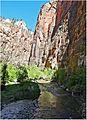 Walk by Still Water, Zion NP, Riverside Walk 5-1-14zf (14480835484).jpg