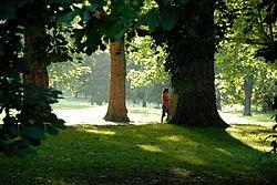 Walking in Finsbury Park.jpg