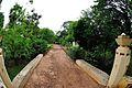 Walkway - Malancha - Santiniketan 2014-06-29 5386.JPG