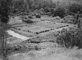 Battle of Kokoda