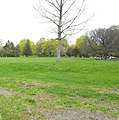 Washington Park open spaces (35160948515).jpg