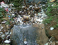 Water pollution due to domestic garbage at RK Beach 03.jpg