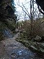 Waterfall - Cascada - Fervenza - rio Toxa - 5 -Acceso.jpg