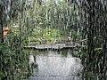 Waterfall aviary (7856749506).jpg
